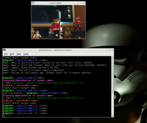 picture taken with Pi cam and displayed with opencv !